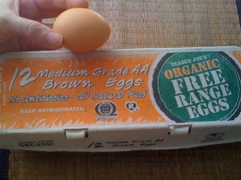 organic, free-range toddler